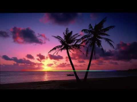Tropical Nu Disco Mix [HD]