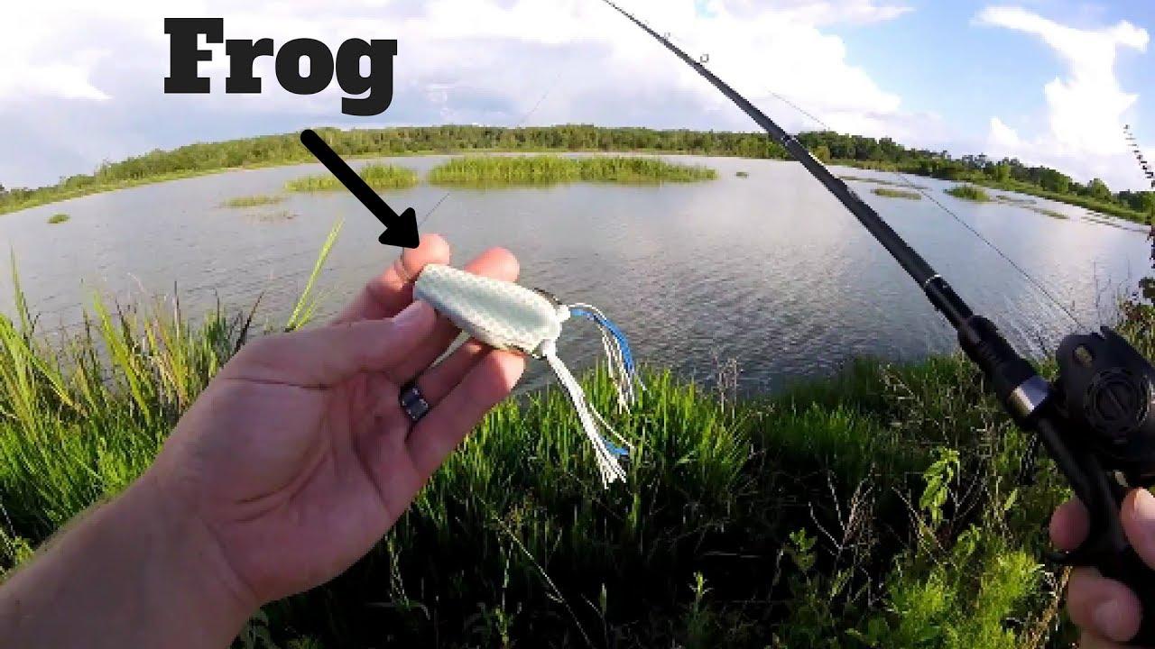 Frog fishing paradise top water bass fishing youtube for Top water bass fishing