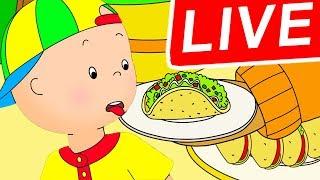 🔴 LIVE Caillou PORTUGUÊS - Caillou Odeia as Tacos ★ Episódios Completos ★ Desenhos Animados