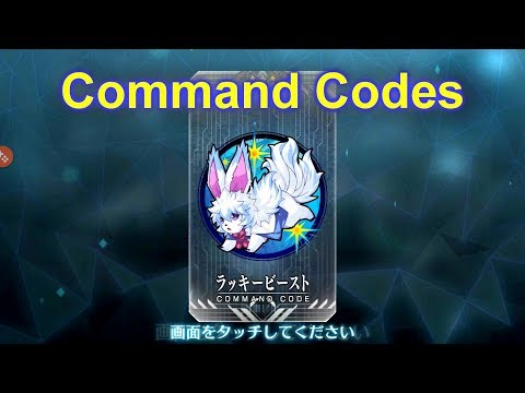 Fate/Grand Order - What Are Command Codes?