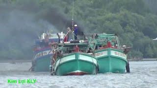 Hàng 100 chiếc tàu cá bị mất cạn trên cửa biển/Fishing vessel.