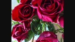 Ruusu On Punainen  - Taisto Tammi -  Roses Are Red (My Love)