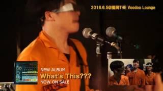 POLYSICS YouTube BLOG 0605 in 福岡THE Voodoo Lounge