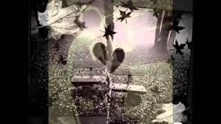 Bülent Ersoy - Hani Bizim Sevdamız 2017 Video