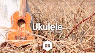 Ukulele - Bensound   Royalty Free Music - No Copyright Music