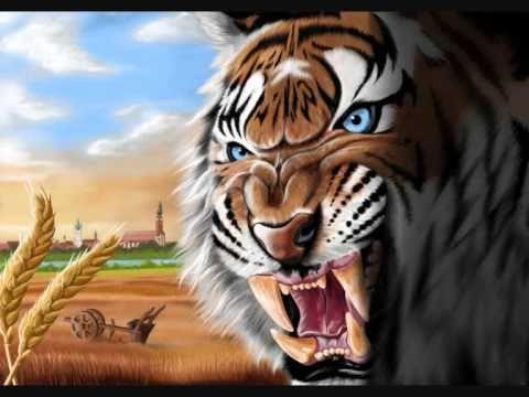 Tigers Straubing