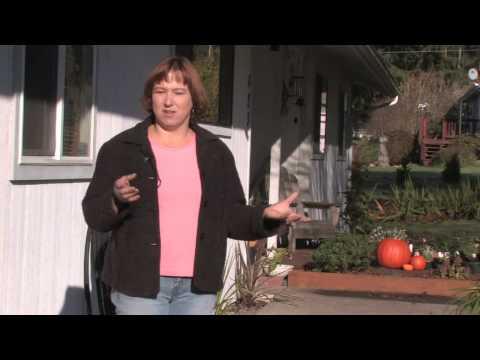 Gardening Tips : Beginner's Guide to Gardening