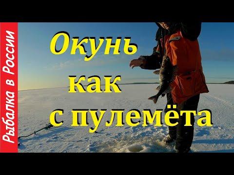 Ловля окуня зимой на блесну. Жерлицы на щуку и налима. Рыбалка в Карелии