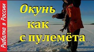 Ловля окуня зимой на блесну Жерлицы на щуку и налима Рыбалка в Карелии