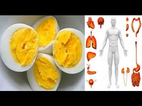 Isso Vai Aconter ao Seu Corpo Se Voce Comer Ovo Todos Os Dias Durante 1 Mes