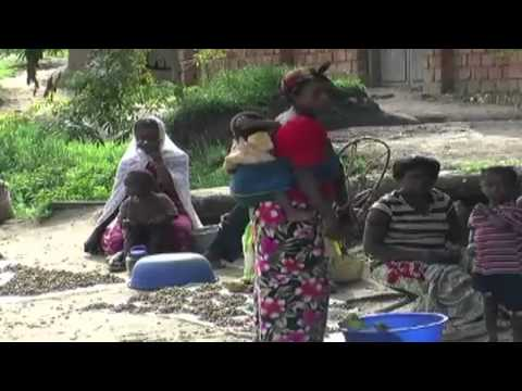 DRC sexual violence victims: Project of PIN/ECHO