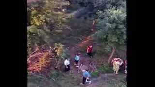 Видеозапись 3. Незаконная рубка и повреждение лесных насаждений. г. Пенза(, 2013-08-15T09:46:45.000Z)