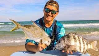 Catching Dinner Off the Beach! (Catch and Cook)
