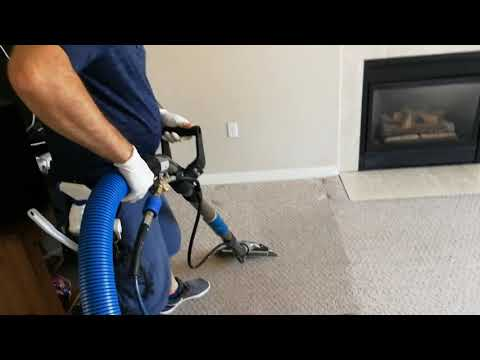 Mississauga Carpet cleaning by Exclusive Home Services