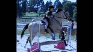 My horse riding story so far