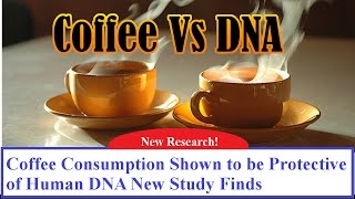 Coffee Consumption Shown to be Protective of Human DNA New Study Finds