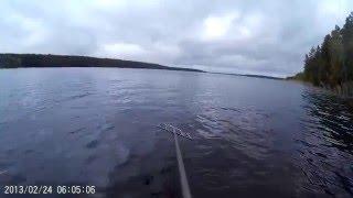 Огромный налим :) Подводная охота.  Высокинское.(Моё первое подводное видео. Подводная охота. Озеро Высокинское. Мелкие щуки. Огромный налим в самом конце..., 2016-03-01T23:47:28.000Z)
