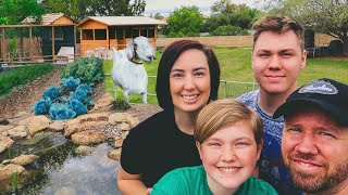 Family builds MINIATURE FARM & GROWS FOOD in their BACKYARD 🏡