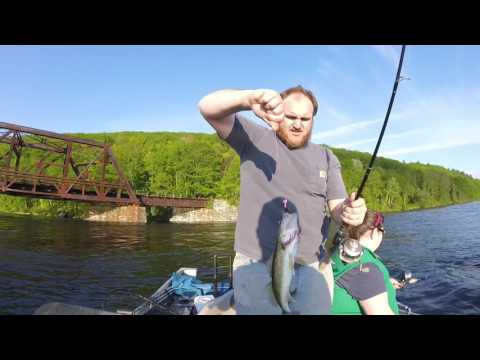 Walleye Fishing On The Connecticut River In Southern Vermont