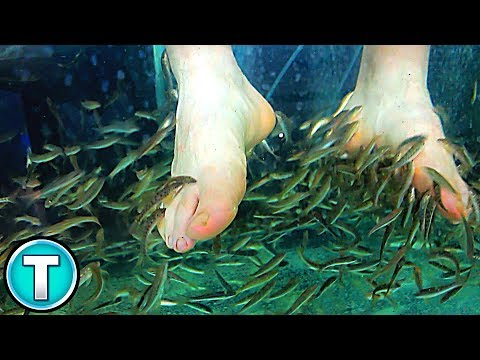 Feeding Fish with Your FEET!