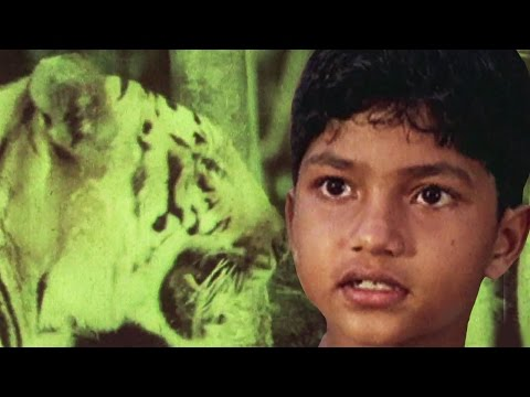 Malgudi Days English – Best Kids Tv Series - Full Episode 43 - A Hero