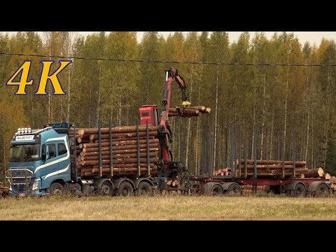Volvo Truck FH16 - timber loading - 4K real time video - tukkirekan lastaus