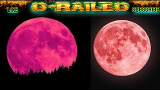 Full PINK MOON April 2020 PINK SUPERMOON Meaning & Time Biggest Super Moon of 2020 Full Moon April 7