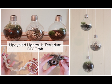 How To Make A Light Bulb Terrarium Macrame Wall Hanging Diy