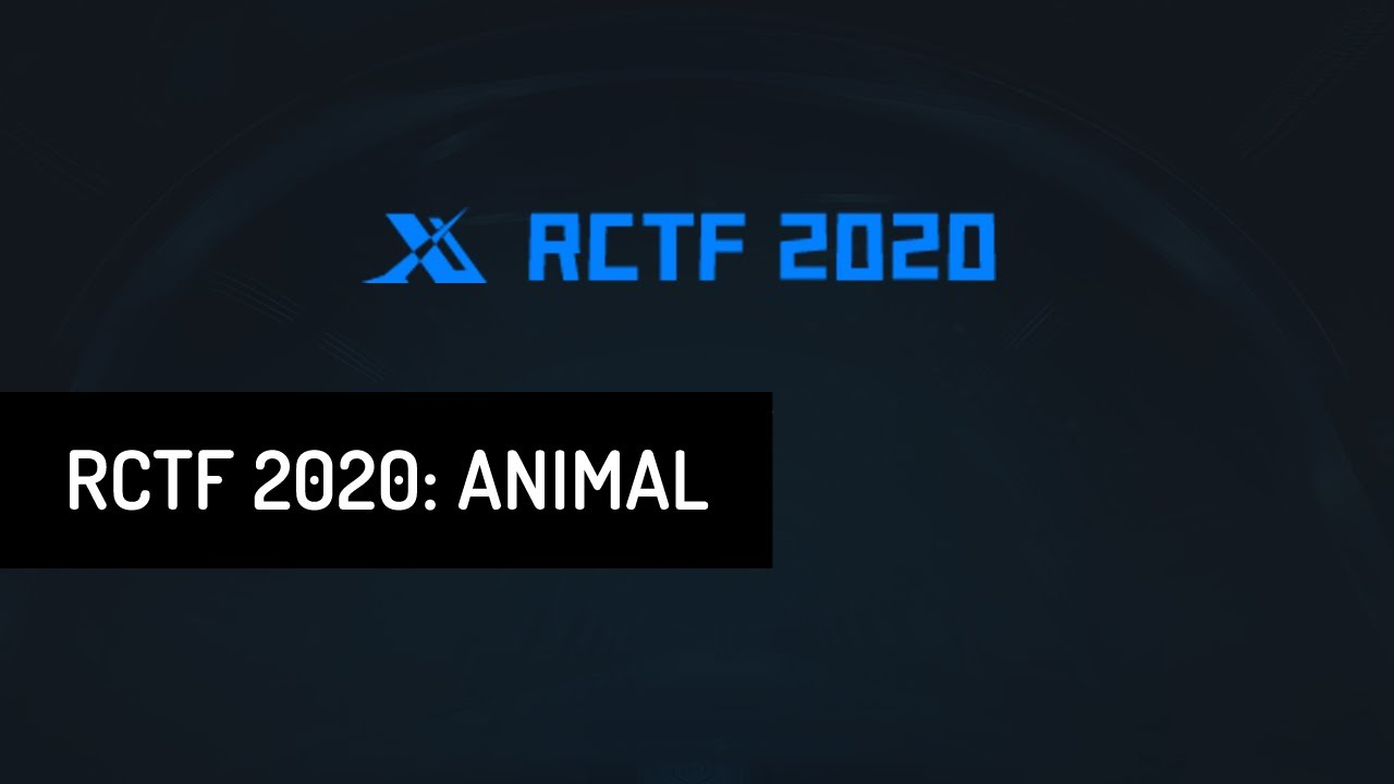 RCTF 2020 • Animal • Challenge solution - YouTube