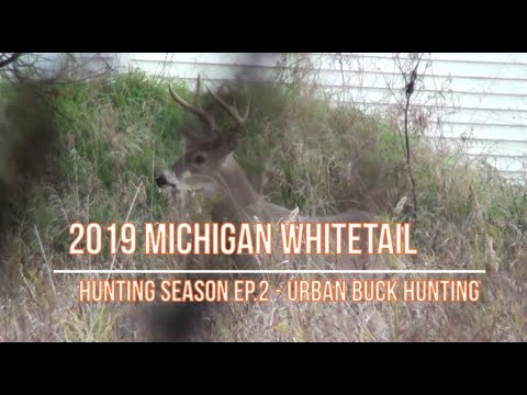 2019 Michigan Whitetail Deer Hunting Ep.2 - Urban Buck Hunting