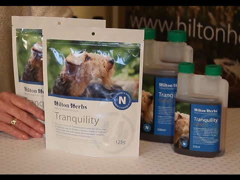 Tranquility - Herbal Calming Supplement for dogs - Product Description