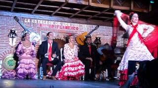 Video Tablao Flamenco II download MP3, 3GP, MP4, WEBM, AVI, FLV Desember 2017