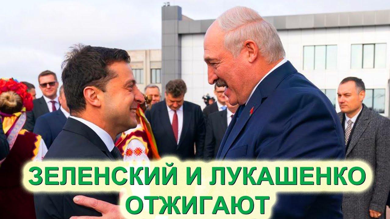 Юмор Зеленского и Лукашенко на выступлении