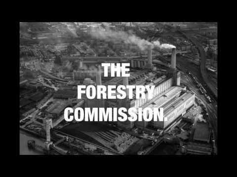 The Forestry Commission -