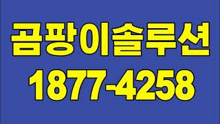 김포 곰팡이제거, 강서구 벽지 곰팡이 도배 (결로 단열…