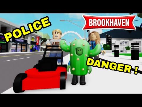 LE CACTUS DEVIENT UN POLICIER FOU ET BIZARRE ! BROOKHAVEN RP - ROBLOX