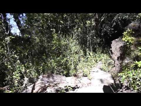 Osorno Volcano - Desolación Trail