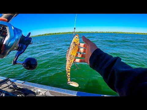 UNEXPECTED CATCH Musky Fishing Minnesota's PRIME WATERS || Muskie Battle 2020