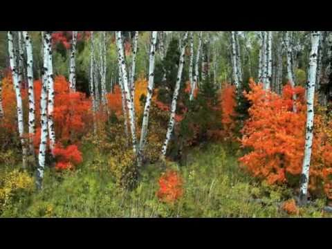 Fall in Park City, Utah - Park City Chamber/Bureau