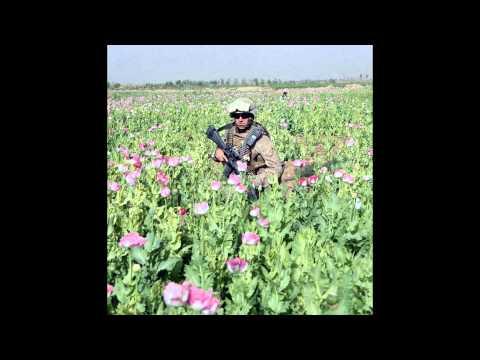 Jello Biafra - Grow More Pot!