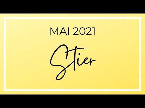 Stier Mai 2021