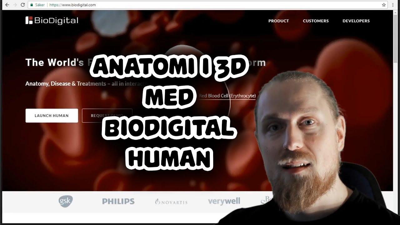 Download BioDigital Human - Anatomi i 3D