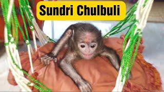 New Sundri Chulbuli 4