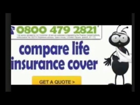 Life Insurance Comparison Quotes Alluring Life Insurance Comparison Quotes  Youtube