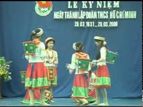video DL Phi Mo chieu tren ban thuong