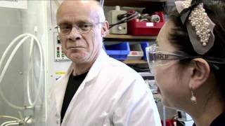 Jelly Babies - Periodic Table of Videos