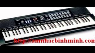 đàn organ roland e16