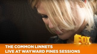 The Common Linnets - We Don