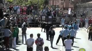 Toro de la Feria 2014 - Carafosco - Medina del Campo