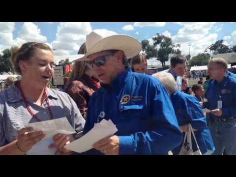 Colorado State Fair livestock auction